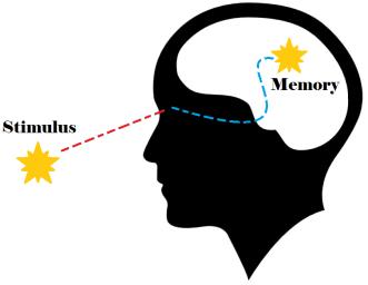 neural path